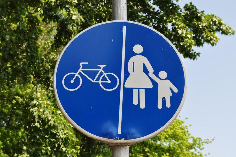自転車 安全